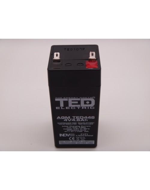 Acumulator 4V 4.6Ah AGM, VRLA Ted446