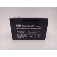 Acumulator 12V 12Ah pentru UPS, VRLA, AGM FBinternational for ROMBAT